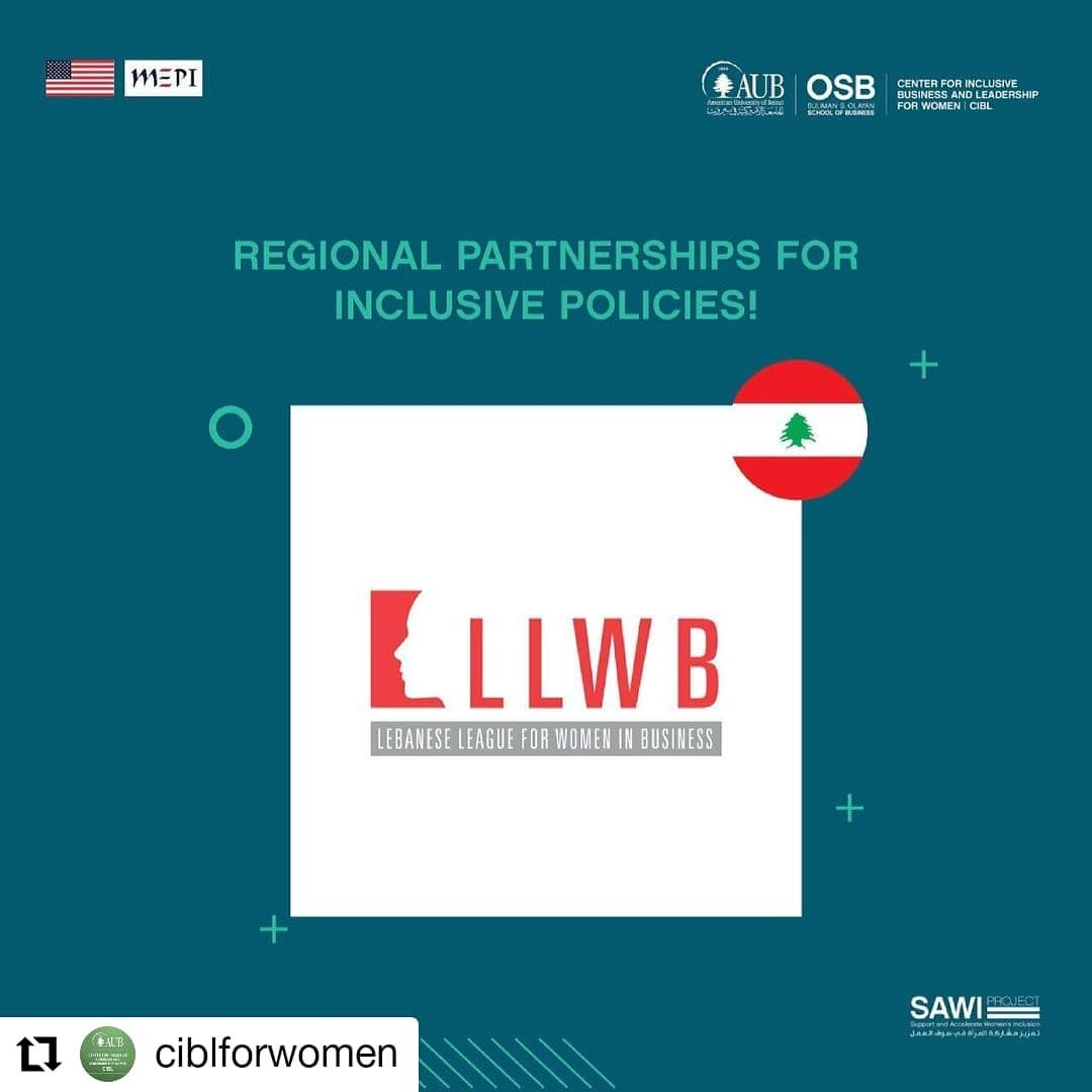 """LLWB a Country partner in """"SAWI Project"""""""