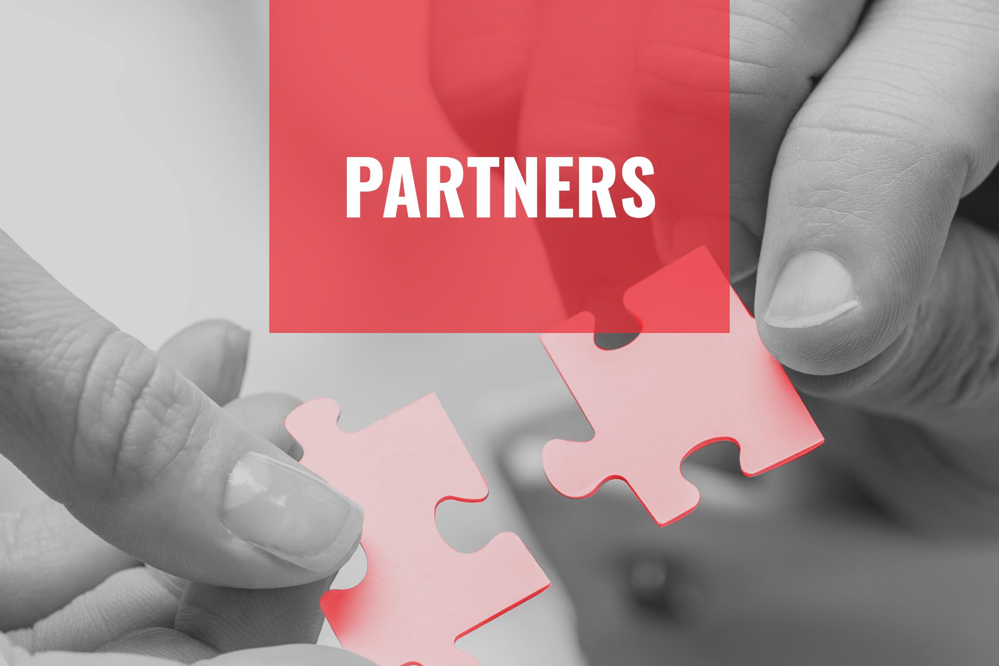 partners-link